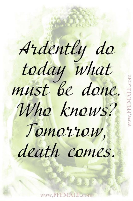 Top 100 Inspirational Buddha Quotes: Buddha - Ardently do today what must be done. Who knows Tomorrow, death comes #quotes #Buddha #deep #inspiration #motivation